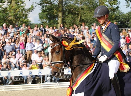 Selektion in der Pferdezucht