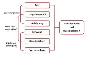 Skala der Ausbildung