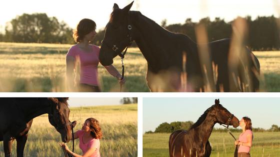 Ihr Pferd hat viel zu sagen – Hören Sie zu?