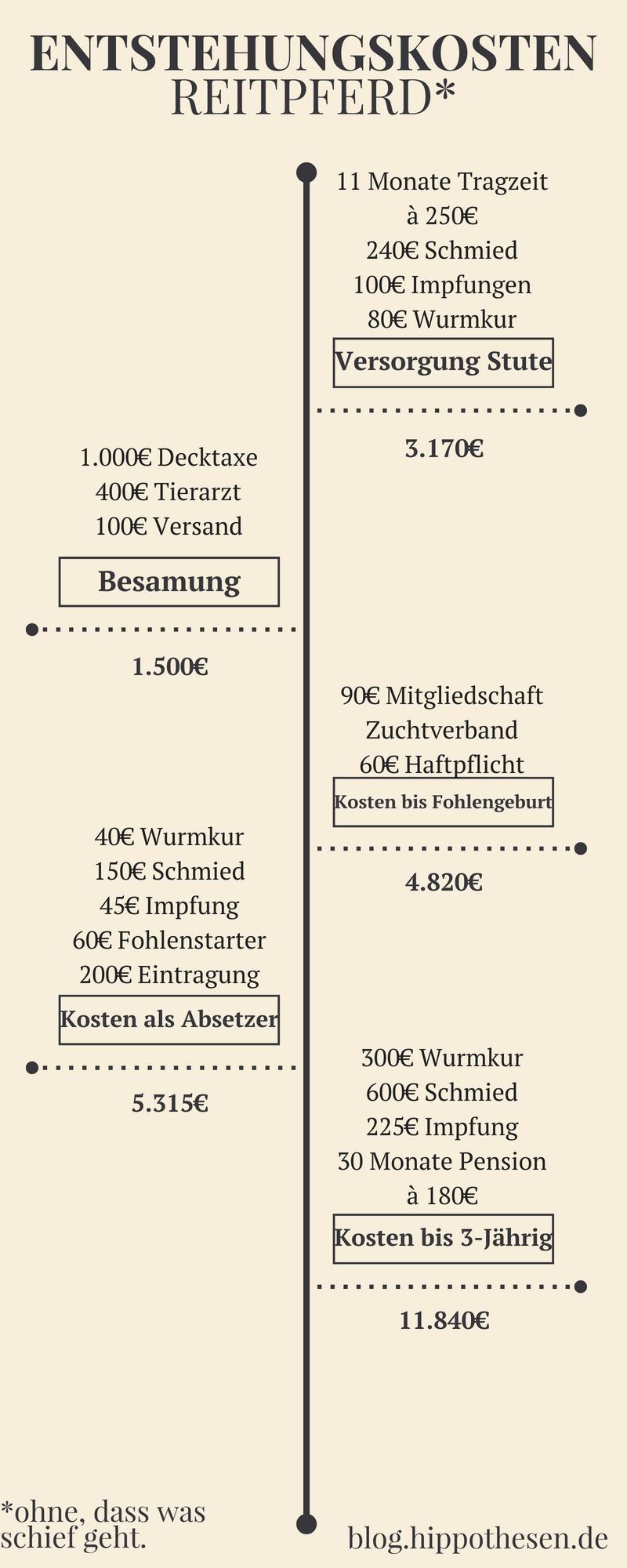 Entstehungskosten Reitpferd